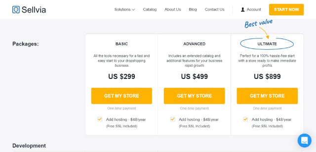 Sellvia Review Custom Store Design Services Pricing